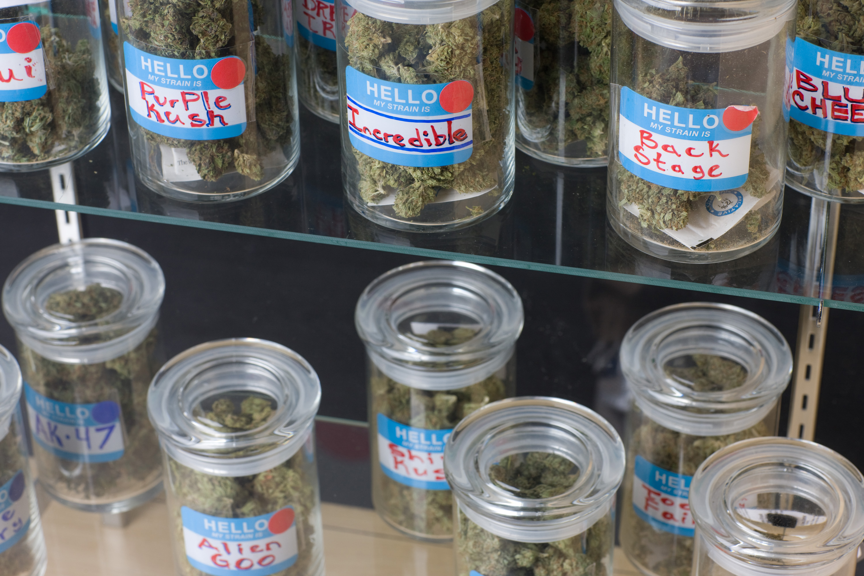 https://assets.sourcemedia.com/c0/b3/d6fe1baa423bb61bcb2ec01c5a01/marijuana-bl111409.jpg